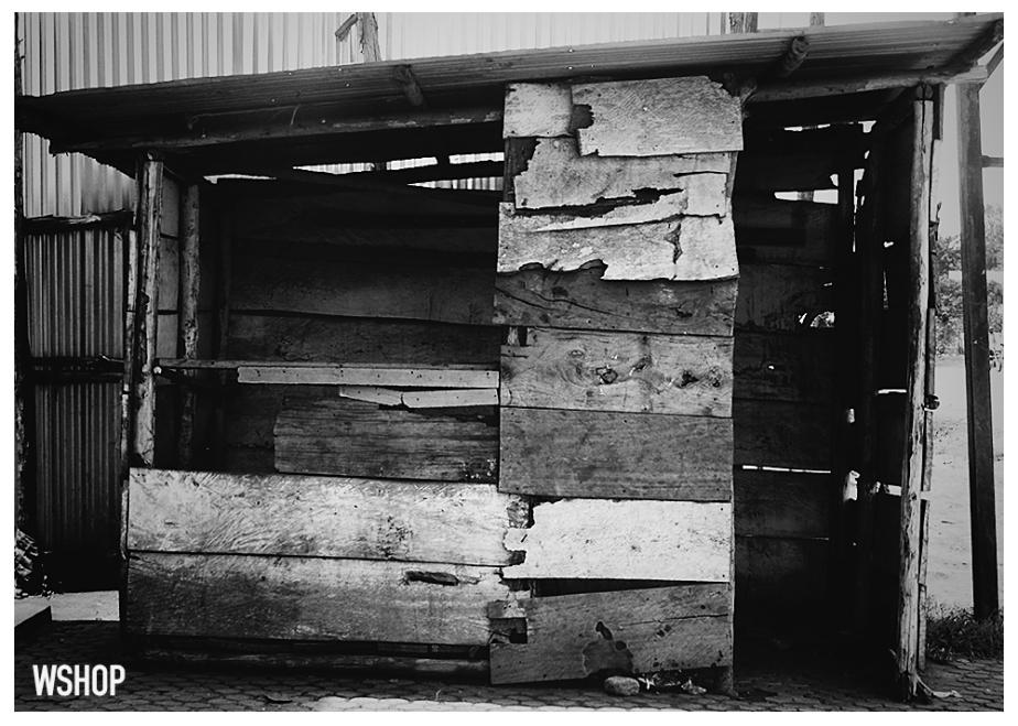 Abandoned Wood