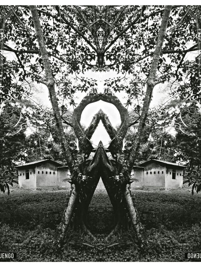 Mirror Series #2